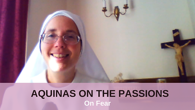Lecture 8: On Fear [ST I-II, qq. 41-44] Video