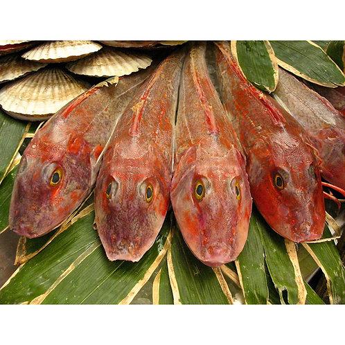 Yokohama Bashi Fish Market, 2012 by Tom Adams
