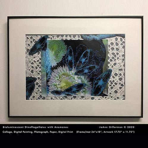 "Bioluminescent Dinoflagellates with Anemones"" by JoAnn (Jody) Gillerman"