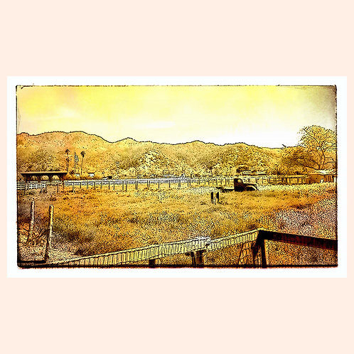 Napa Landscape by Daniel Franco