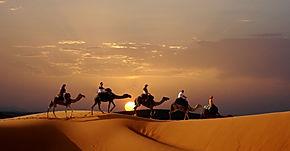 Cameltrek puesta del sol - Nomad Palace