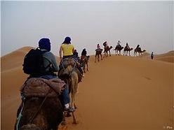 Caravana - Nomad Palace