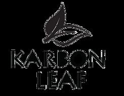 Karbon leaf 1 (1).png