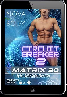 MATRIX 30 - CIRCUIT BREAKER 2.png