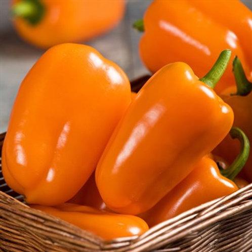 "Pepper, Orange Blaze 3.25"" Pot (one plant)"