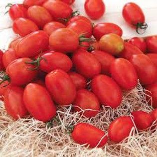 Tomato, Sugar Plum Grape