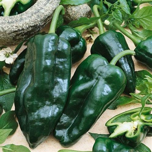 Pepper, Poblano 2 pk