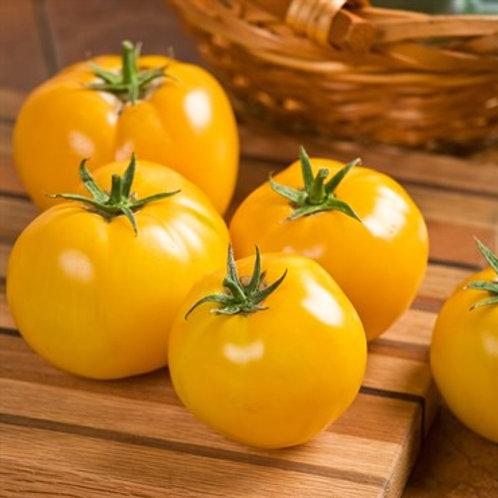 Tomato, Lemon Boy