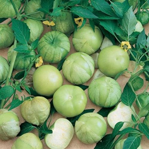 Tomato, Tomatillo Verde