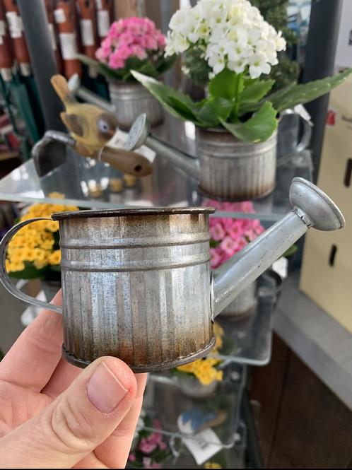 """Mini Tin Watering Can pot 2.5"""""""
