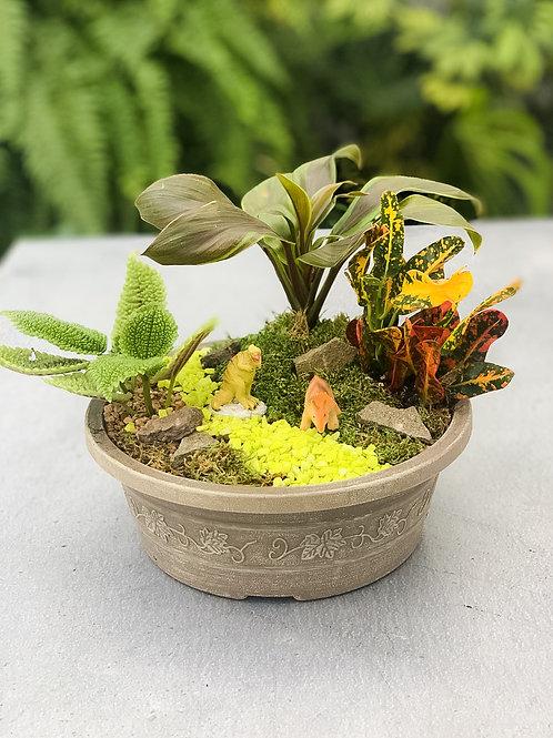 Miniature Garden Kit