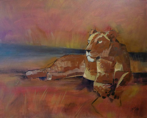 Lioness resting - Sold