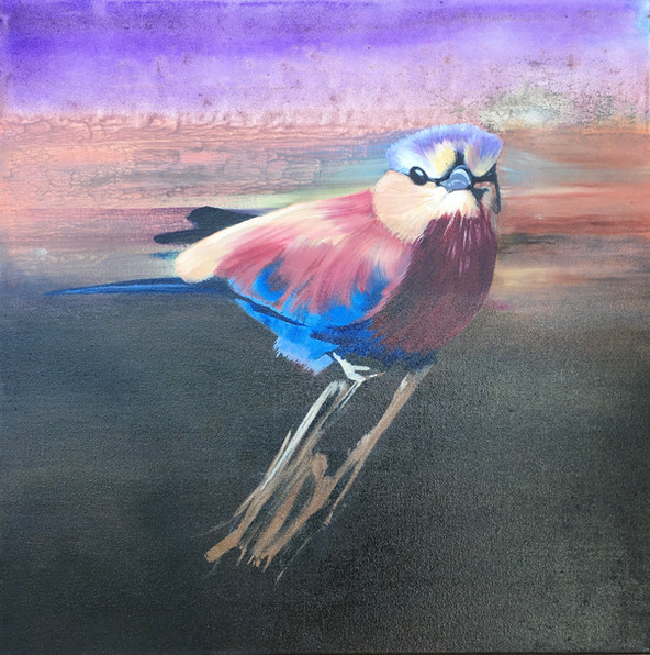 Lilac Crested Roller - 50 x 50 - Oil  - £195