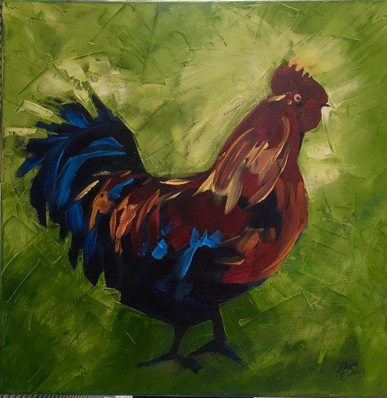 Funky Cockeral - Oil - 50 x 50 - £155