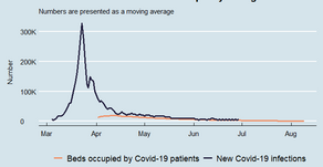 Understanding the risks of the second wave of Covid-19