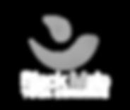 logo-whitebmyihorizontal-4000x3388.png