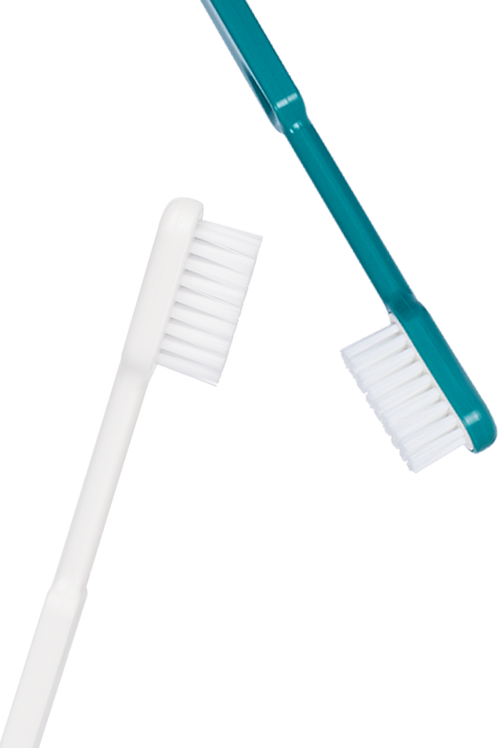 Caliquo- Pack Duo brosses à dents rechargeable