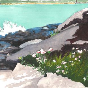 13/14 July 2018. Flowers On The Rocks.