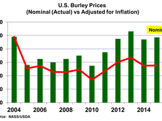 Modest Changes in 2016 U.S. Burley Contract Volume and Prices