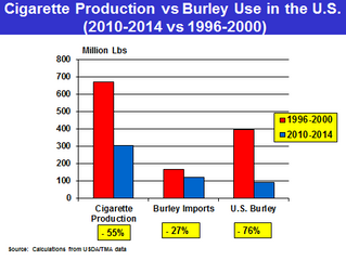 A Closer Examination of the Domestic Cigarette Market:  Implications for U.S. Burley Demand