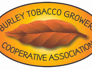 Partial Settlement Reached In Dispute on Future of Burley Tobacco Growers Cooperative Association