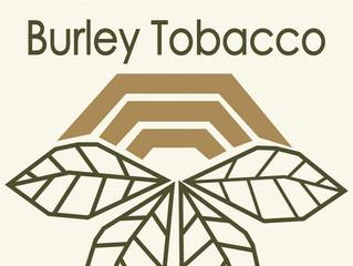 Uncertainty in the Burley Industry