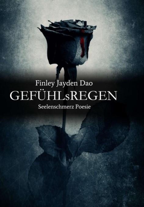 cover Gefühlsregen by FJD (2).jpg