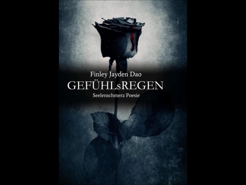 GEFÜHLsREGEN_Seelenschmerz_Poesie by Fin