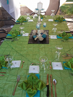 Dinner Party in the Oasis