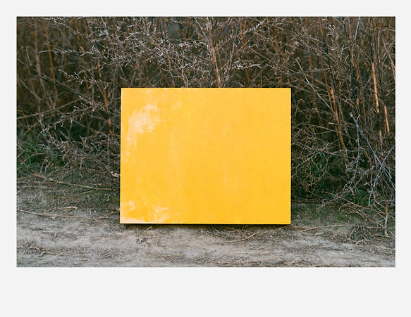 Portrait of a yellow painting #1_reduced