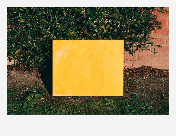 Portrait of a yellow painting #2_reduced