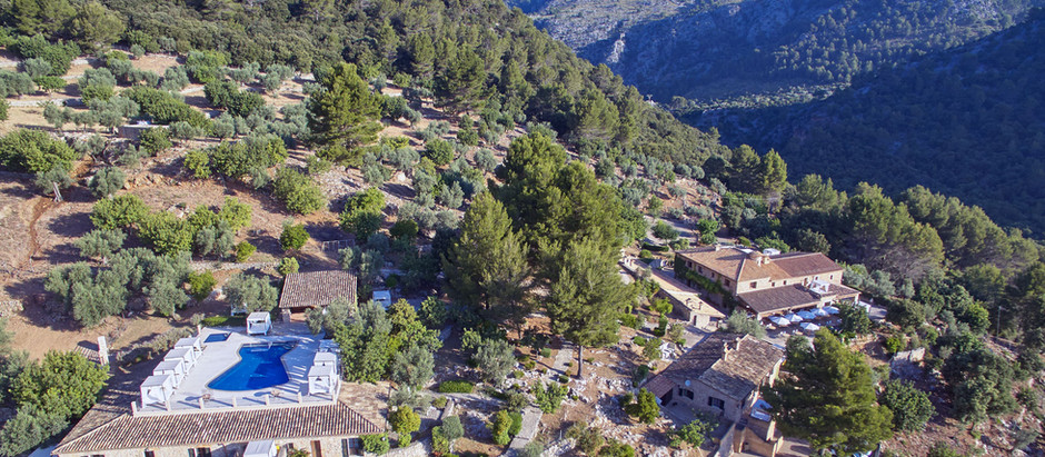 Voll im Trend - Fincaurlaub auf Mallorca