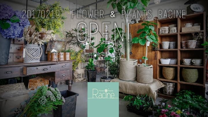 Flower & Plants Racine!