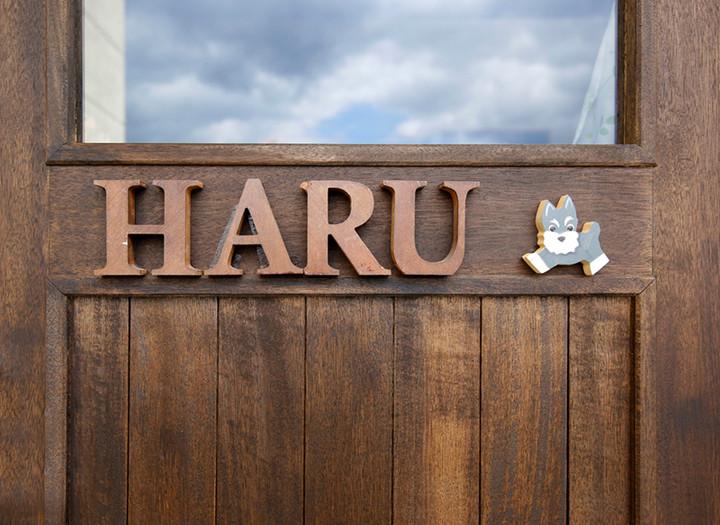 4月27日ペットサロンHARUがリニューアルオープン!