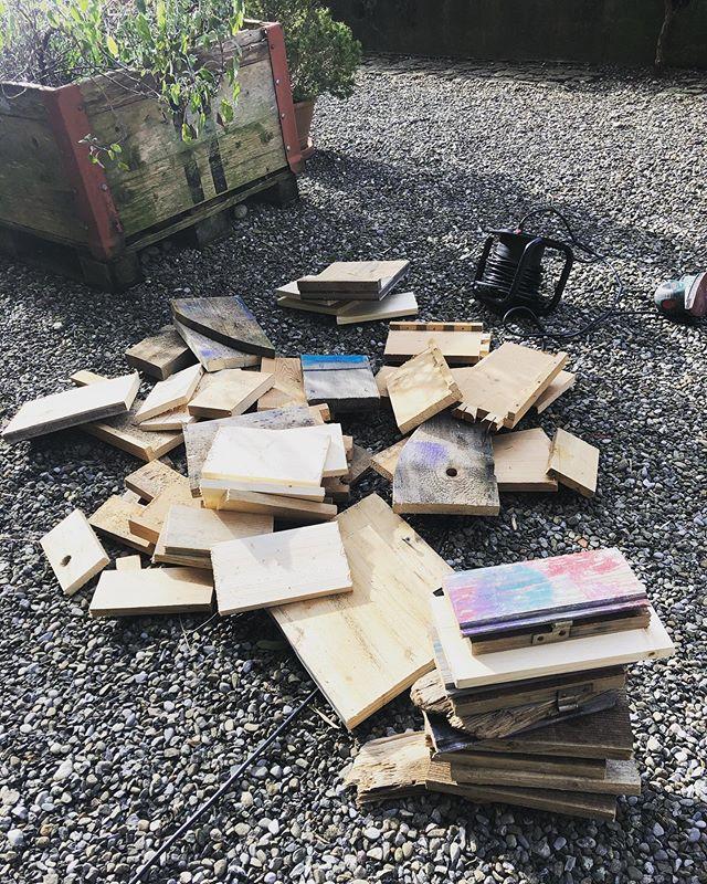Recycling vor der Haustür 😀 Jippie neue