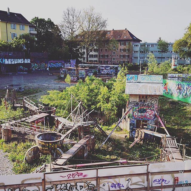 #warmbächlibrache  Soviel tolles Holz wa