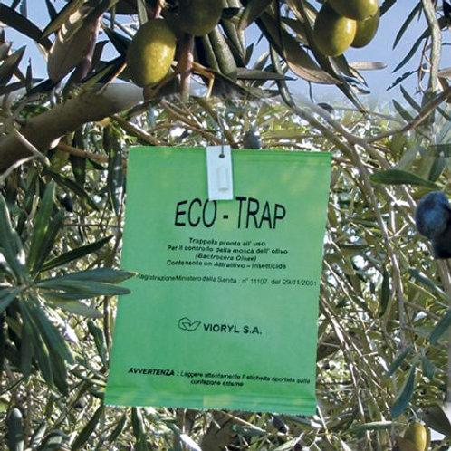 ECOTRAP - trappola per mosca dell'olivo