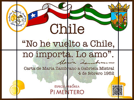Chile_red1.jpg