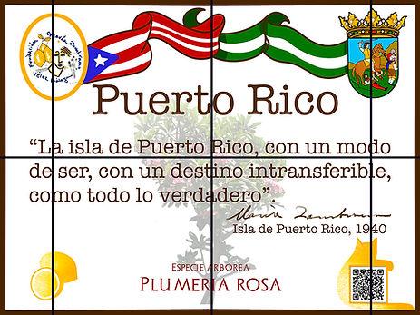 Puerto-Rico-2_red.jpg