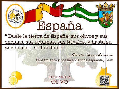 España2_red.jpg