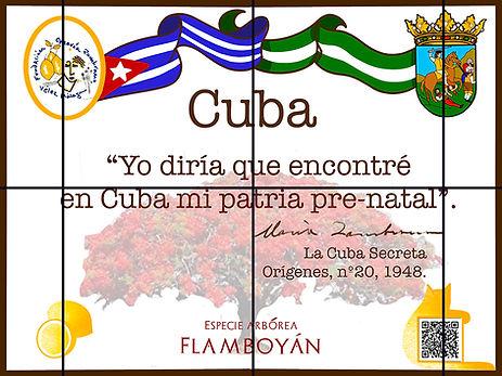 Cuba_red.jpg