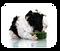 kisspng-guinea-pig-stock-photography-5af