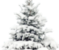 kisspng-snow-tree-pine-christmas-wallpap