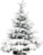 kisspng-snow-tree-pine-christmas-wallpap
