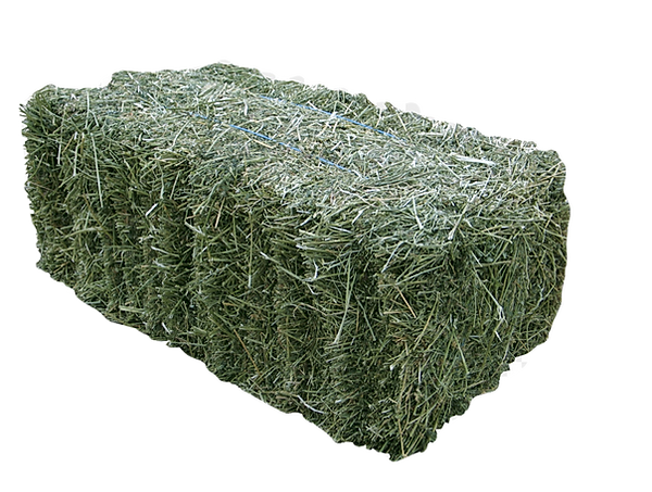 kisspng-alfalfa-hay-baler-fodder-silage-