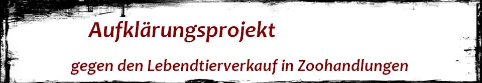 Screenshot_2019-03-03_Aufklärungsprojekt