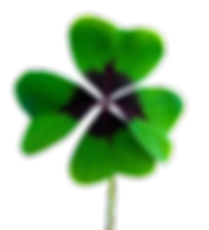luck-1936600_960_720.png