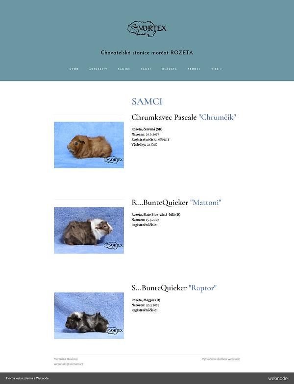 Screenshot_2019-05-08 Samci  Meerschweinchenaus Zucht in TschechienChs-vortex07