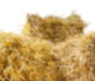 straw-1674953_960_720.png