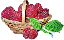 raspberries-3966401_960_720.png